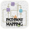 Browse pathways involving human phosphatases and their substrates